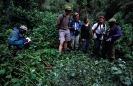 Tourists at Gorilla Nest Bwindi National Park