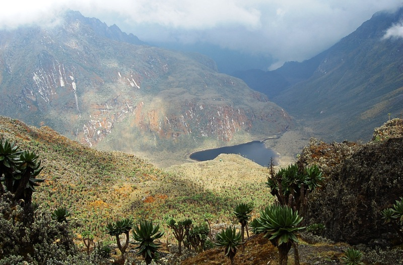 "8 Days Mountain Climbing ""Mountains of the Moon"" or The Rwenzori Mountains."